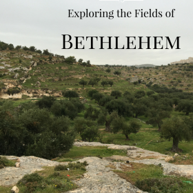 Exploring the Fields of Bethlehem